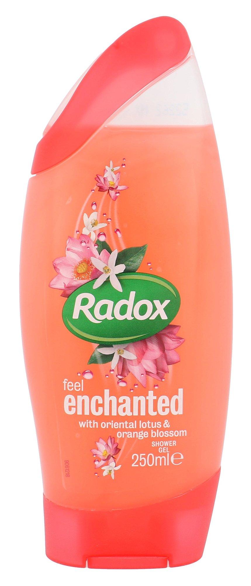 Radox Feel Enchanted Cosmetic 250ml
