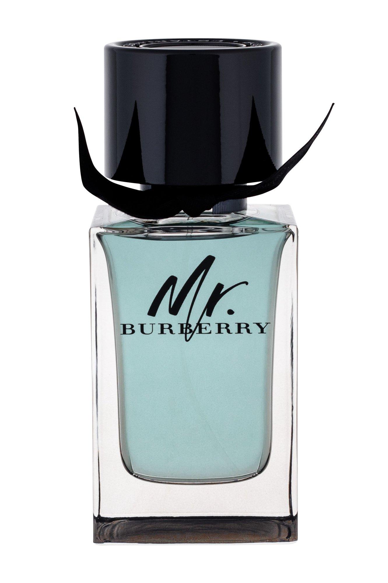 Burberry Mr. Burberry EDT 100ml