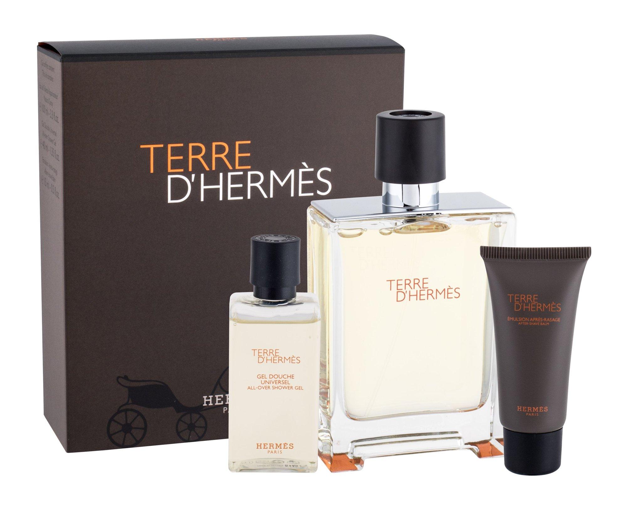 Hermes Terre D´Hermes EDT 100ml