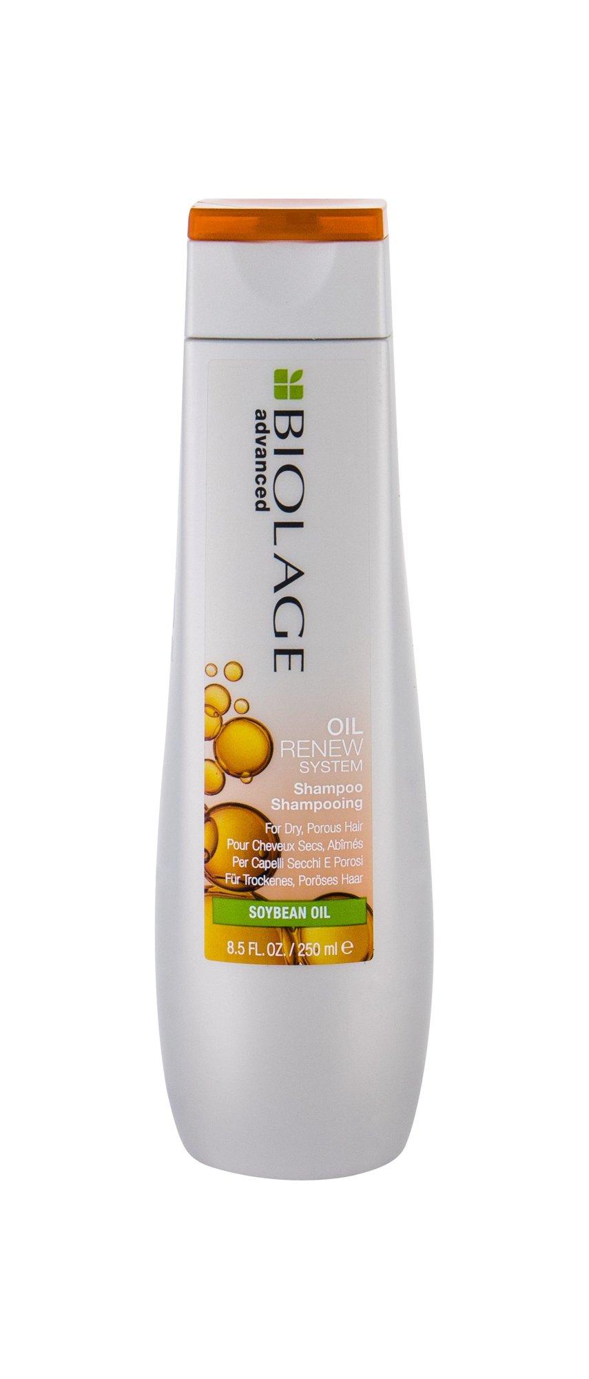 Šampūnas Matrix Biolage